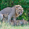 #Africa, #Kenya, #Sunworldtours, #Nikon, #Natgeo