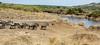 030 River Crossing KenyaTrip2013-01192