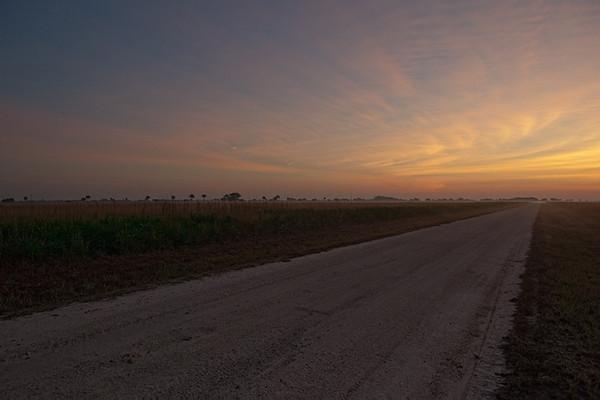 Sunrise looking down Military Road (Kissimmee Prairie)