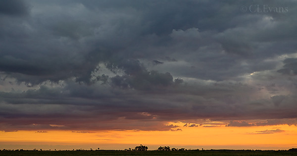 Clouds at sunset on Kissimmee Prairie