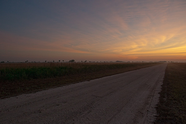 Sunrise looking down Military Road (Kissimmee Prairie)