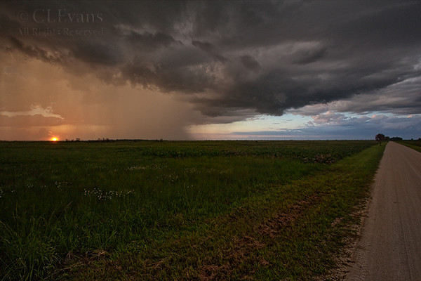 Rainy sunset, on Peavine Trail (Kissimmee Prairie Preserve)
