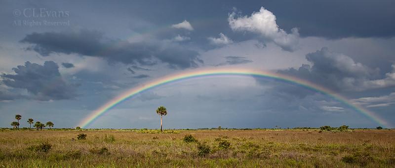 Rainbow over the prairie (Kissimmee Prairie Preserve)