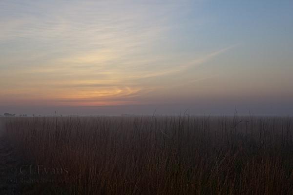 Daybreak at Kissimmee Prairie Preserve