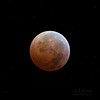 2010 Winter Solstice Lunar Eclipse (from Kissimmee Prairie)<br /> <br /> The lunar eclipse was spectacular at Kissimmee Prairie -- the place with the least light pollution in the Florida peninsula. Stars shone brightly with the moon in full shadow, and even shooting stars were seen streaking across the sky at times.