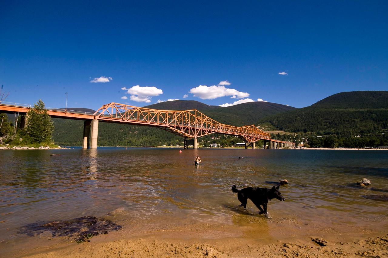 Nelson Bridge with dog