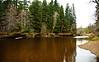 "Site of 37"" Steelhead, First Fish Log, Kadake Creek, Kuiu Island, Alaska April 2013"