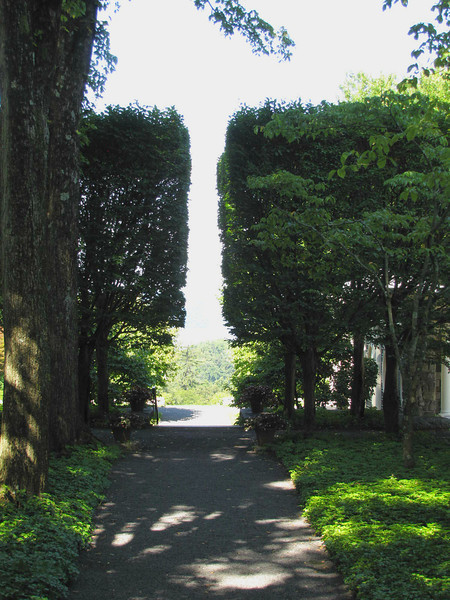 sculptured hornbeam trees, framing a view west to the Hudson River