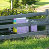 bee hives, for honey and the even more important pollenization of the various crops being grown