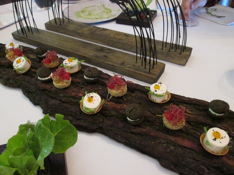 course #4:  served on a real piece of bark - a poached egg, a charcoal whoopee pie and an eggplant bird's nest