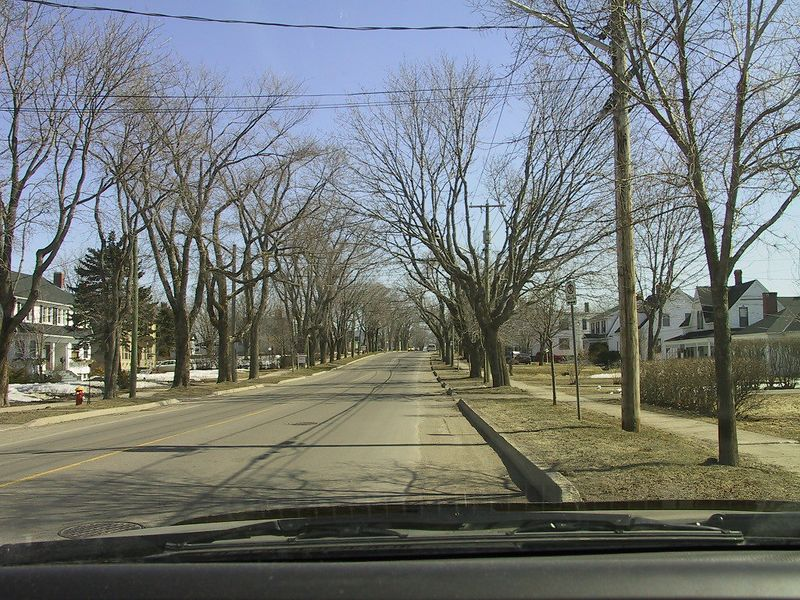 MANAWAGONISH RD IN THE SPRING