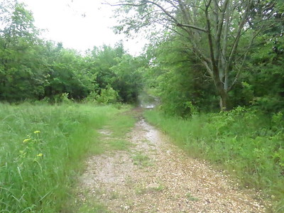 Trailhead to the redbud trail. now flooded out  The water is, I think coming from the riverbank overflowing about half a mile away.