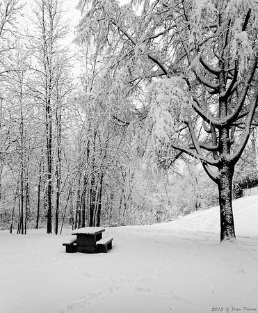 La première neige de l'hiver sur la rivière Cap-Rouge en noir et blanc
