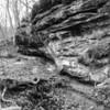 LaBarque Hills Conservation Area MO-1492