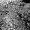 LaBarque Hills Conservation Area MO-1524