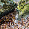 LaBarque Hills Conservation Area MO-1536
