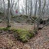 LaBarque Hills Conservation Area MO-1503