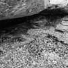 LaBarque Hills Conservation Area MO-1512