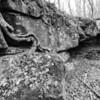 LaBarque Hills Conservation Area MO-1518