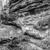 LaBarque Hills Conservation Area MO-1491