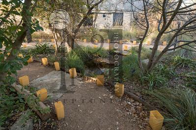 Lady Bird Johnson Wildflower Center Gallery: http://smu.gs/2gK64ud
