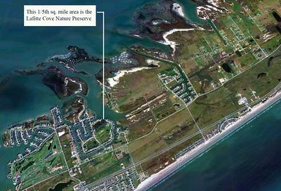 Lafitte Cove Nature Preserve, May, 2013