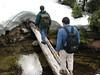 Понеже си имахме съвсем пресен (и неуспешен) опит от газене на сняг в Olympic Mountains, лесно решихме да не продължаваме тук. Иначе искахме да стигнем две по-малки езерца недалече.
