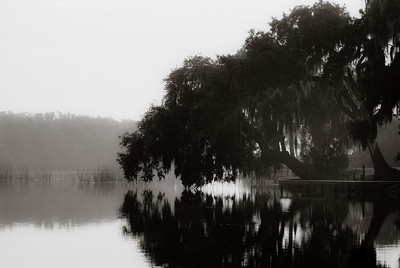 A morning fog on Silver Glenn River.