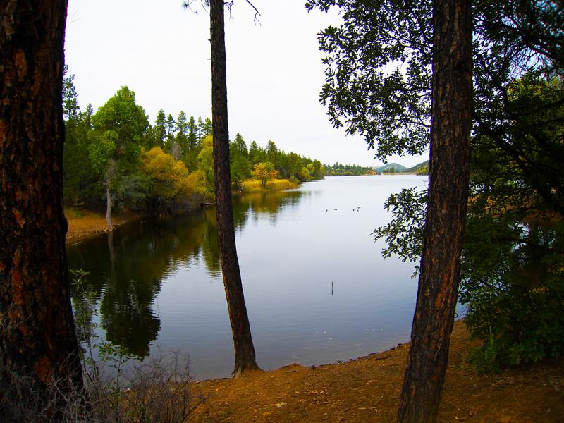 Calm Cove