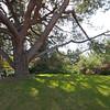 Fullerton Arboretum - 5 Mar 2011