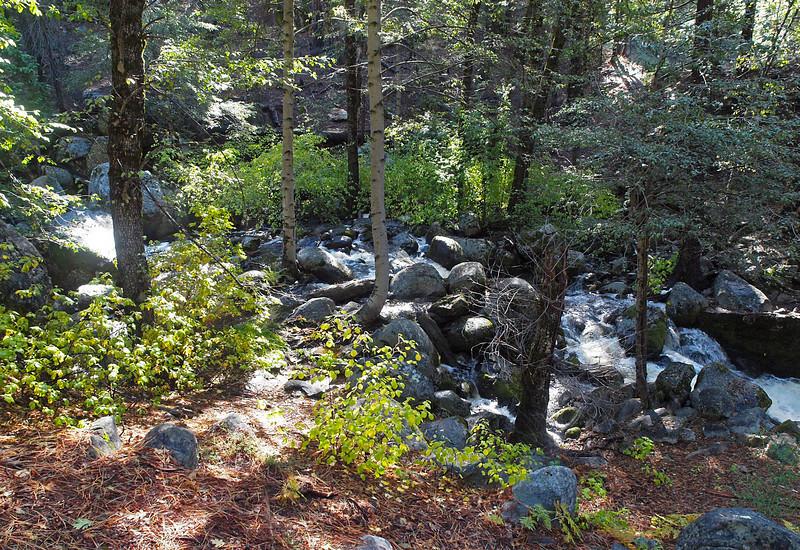 Alder Creek in Yosemite Valley - 25 Oct 2010