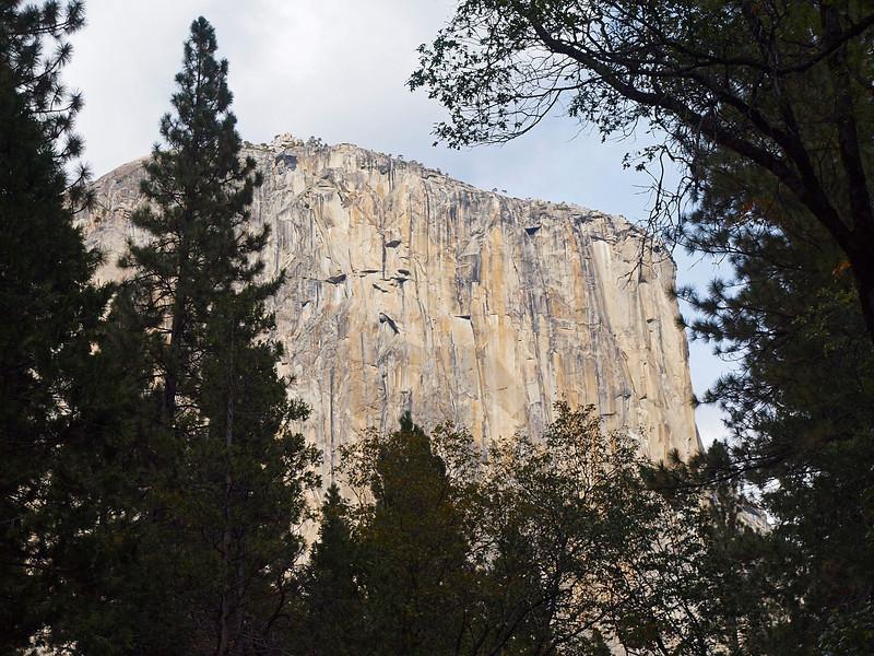 El Capitan through the trees at Yosemite Valley - 22 Oct 2010