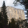 El Capitan through the trees at Yosemite Valley - 22 Oct 2010