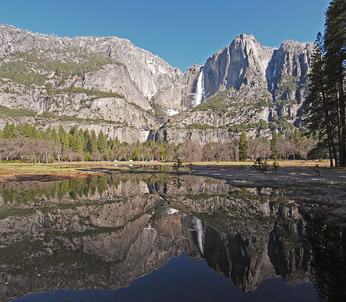 Upper and Lower Yosemite Falls reflected in Cook's Meadow in Yosemite Valley - 10 Apr 2011