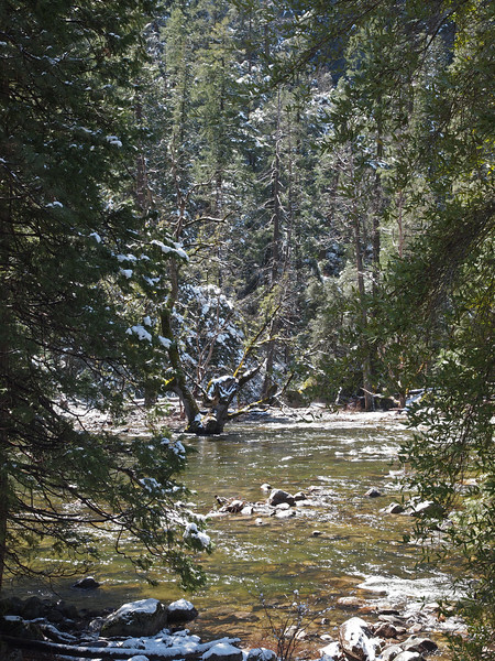 Merced River in Yosemite Valley - 9 Apr 2011