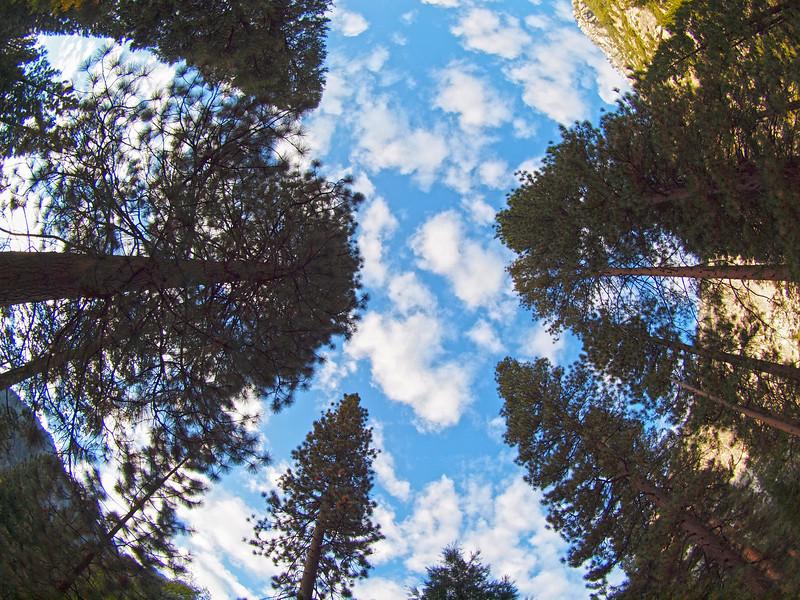 Sky through the fisheye at Yosemite Valley - 22 Oct 2010