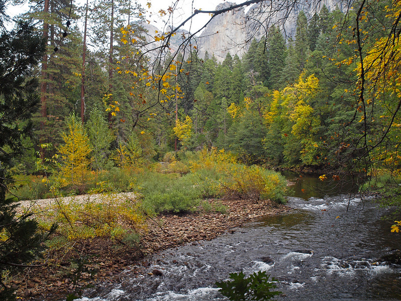Merced River just upstream of the Pohono Bridge in Yosemite Valley - 22 Oct 2010