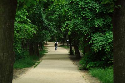 Normafa Walkway — Normafai sétaút