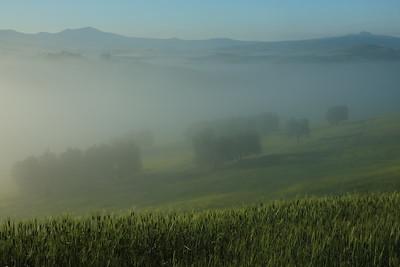 Val d'Orcia tra Quirinco e Pienza