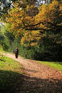 Vácrátóti Nemzeti Arborétum ősszel