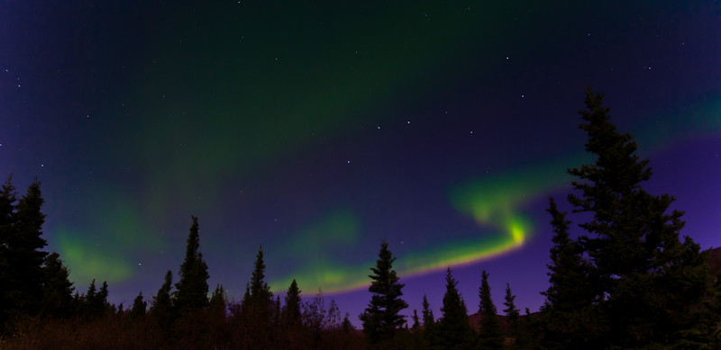 """The """"Great Bear"""" with Lights. Several hours of shooting produced only a few images when the Aurora surrounded Ursa Major,the Big Dipper. Near Healy,AK. #924.098."""
