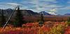Denali, fall view from Savage River Country,Denali Nat.Park,Alaska. #94.166.