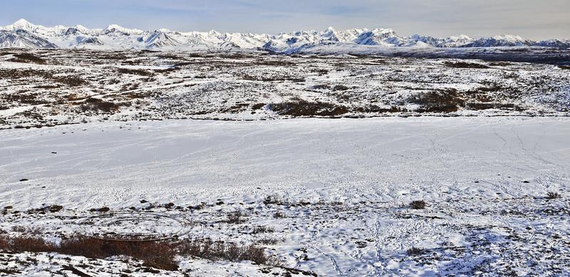C-2010.10.24#029.After the caribou have passed. Alaska Range, Alaska.