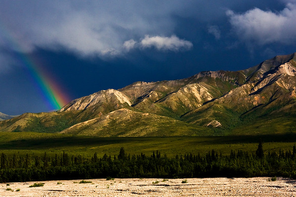 This rainbow photograph was captured within Denali National Park, Alaska off of the park road (7/09).  This photograph is protected by the U.S. Copyright Laws and shall not to be downloaded or reproduced by any means without the formal written permission of Ken Conger Photography.