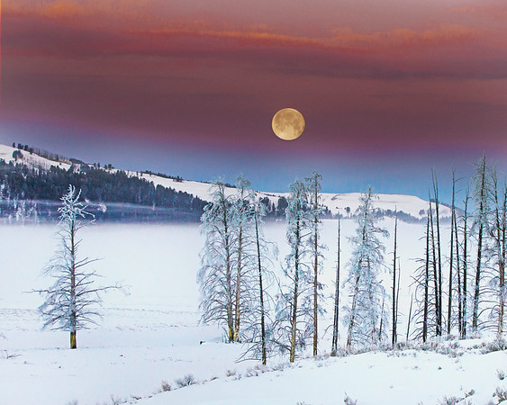 This moonset photograph, taken just before sunrise, was captured in Yellowstone National Park, Wyoming (1/14). This photograph is protected by the U.S. Copyright Laws and shall not to be downloaded or reproduced by any means without the formal written permission of Ken Conger Photography.