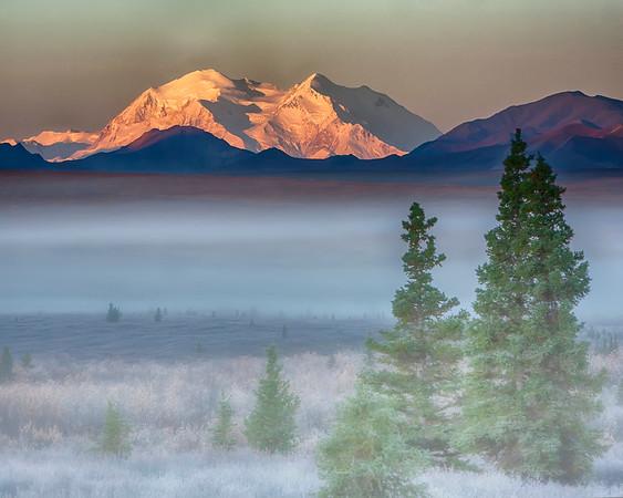 Denali Sunrise, Denali National Park, Alaska