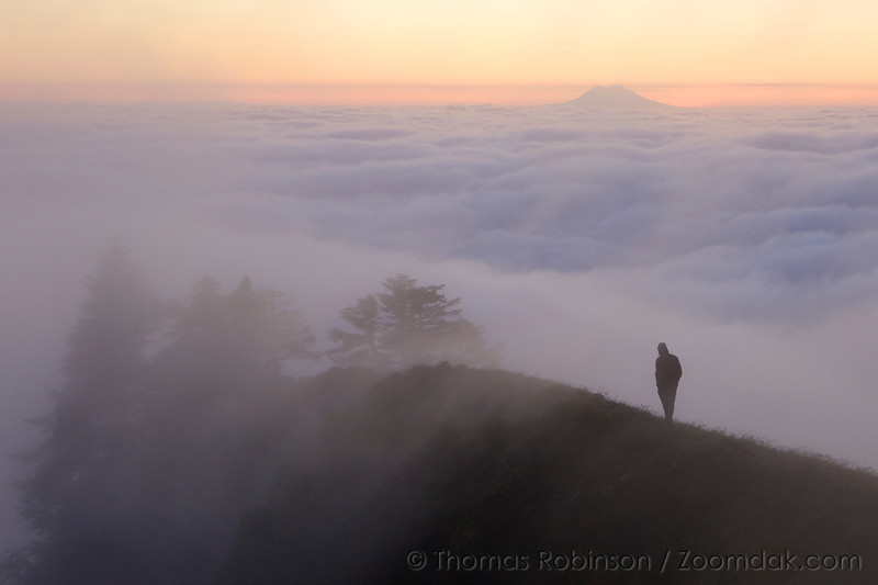 A single hiker walks a ridge top near the top of Saddle Mountain before sunrise. Mt. Rainier is visible above the clouds in the background.