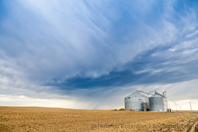 Palouse Wheat Silos