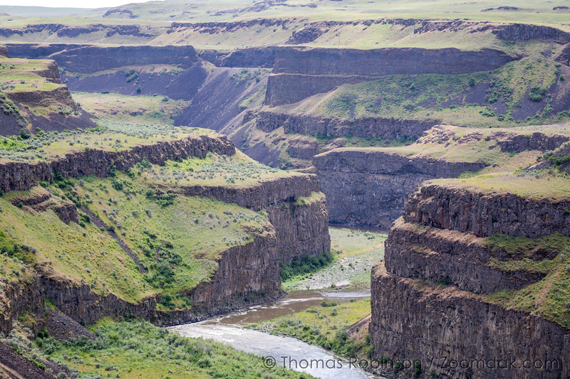 The Palouse Canyon, Spring