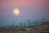 Apocalyptic Moon